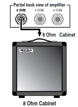 plug your combo's speaker(s) into the amplifier chassis as you would any  extension cabinet